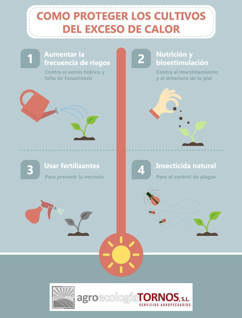 Acciones correctoras y preventivas del exceso de calor en los cultivos