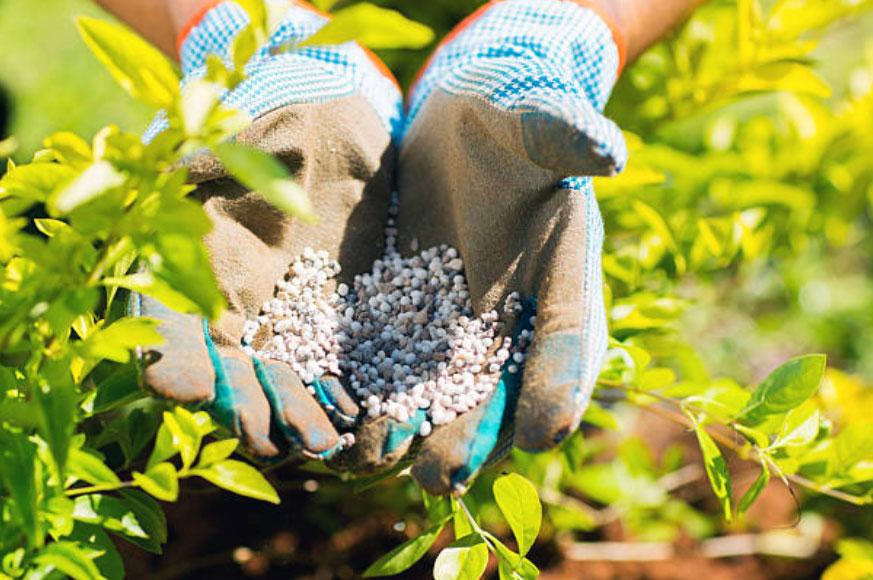 Fertilizantes inorgánicos