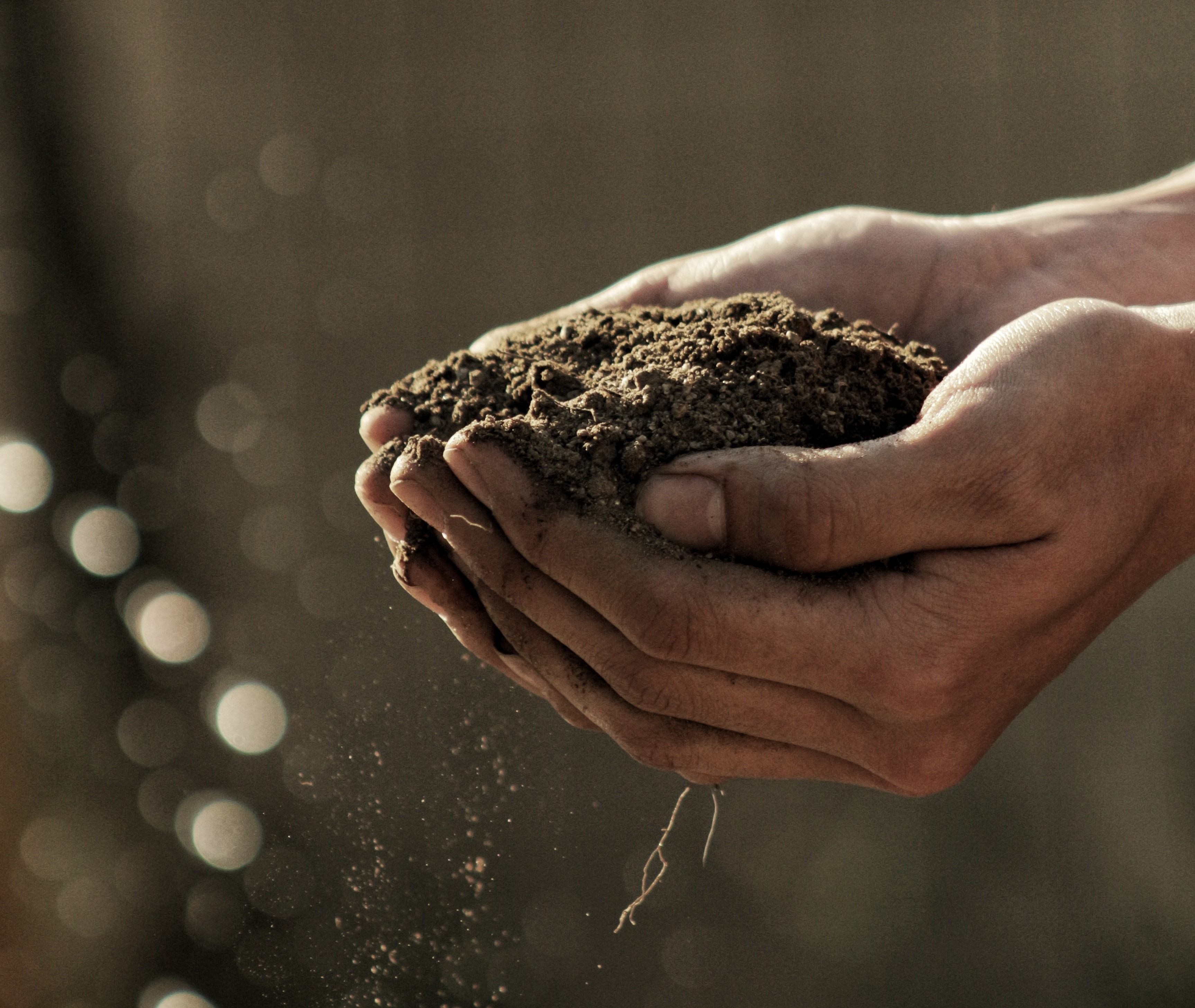 Análisis suelo agrícola