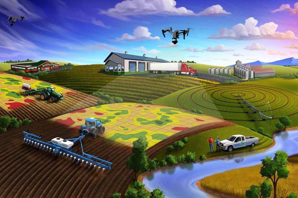 Agricultura de precisión, la revolución silenciosa en el sector agrícola